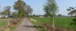 Tolhuisweg